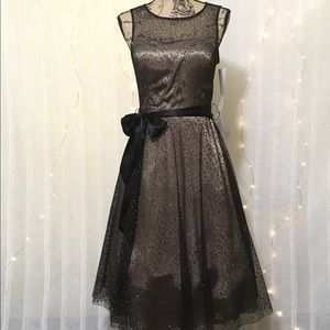 NWT Romantic Whimsical Cocktail Dress